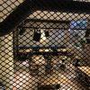 mebli-dlya-restoranu-gvara-lviv-dival (6)